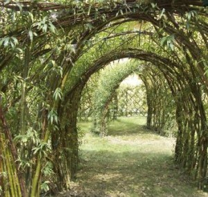 Capanna in giardino